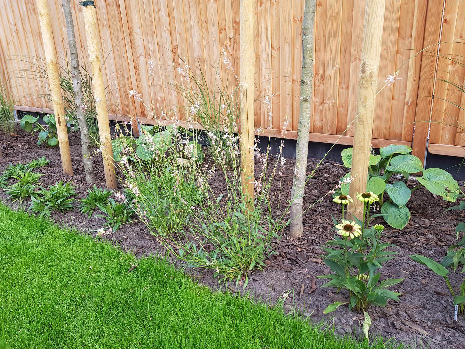 Gartengestaltung_FreiraumPlanungTenfelde